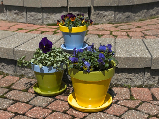 Translucent glowing pots for indoor and outsite gardening Translucent glowing pots for indoor and outsite gardening Translucent 2Bglowing 2Bpots 2Bfor 2Bindoor 2Band 2Boutsite 2Bgardening1