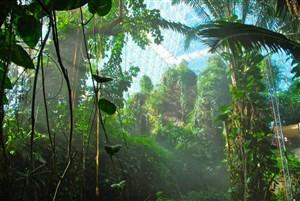 Pengertian Cagar Biosfer