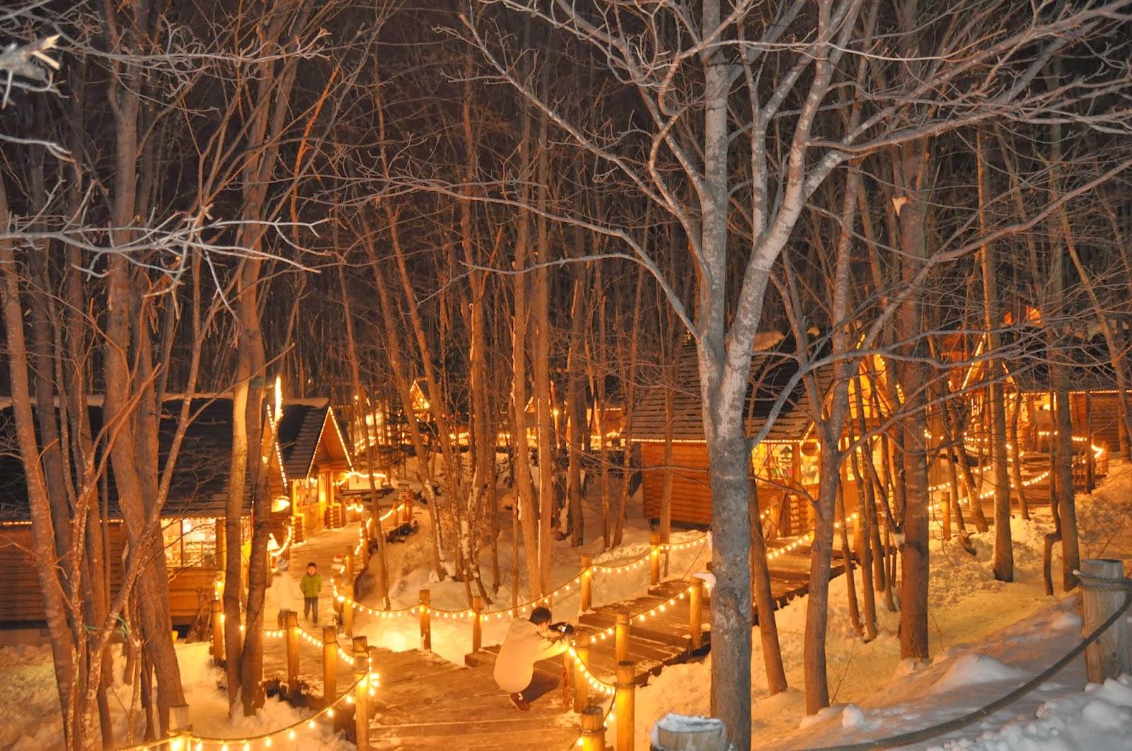 四隻腳板周圍遊: 2013冬北海道自駕遊 Day 4