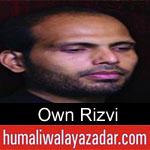 https://www.humaliwalyazadar.com/2018/08/own-rizvi-nohay-2019.html