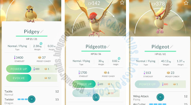 Cara Membuat Pokemon Berubah Evolusi(Evolve) di Pokemon GO