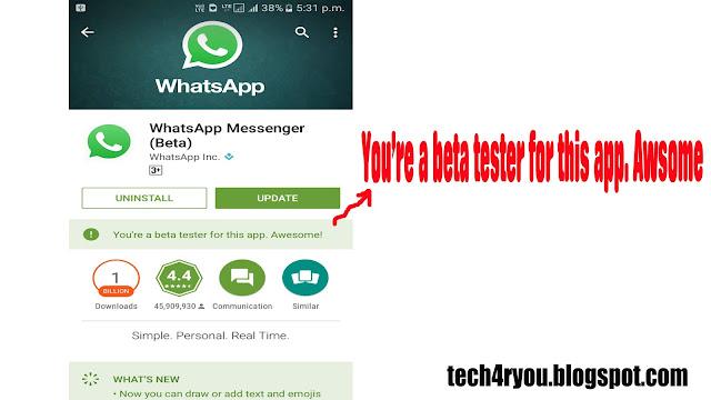beta whatsapp