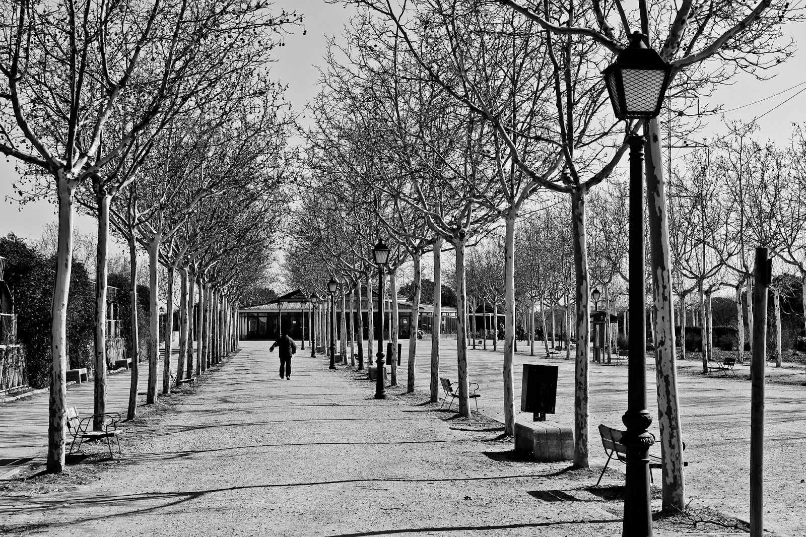 Caminante Parque Polvoranca, Alcorcón 2014