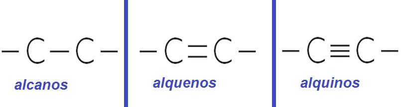 Propiedades Físicas De Los Alcanos Alquenos Y Alquinos Quimica11