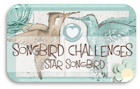 Star Songbird 19-01-2014