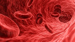 Blood Cells and Cells Illustration