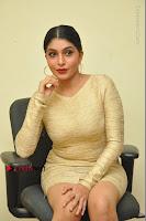 Actress Pooja Roshan Stills in Golden Short Dress at Box Movie Audio Launch  0077.JPG