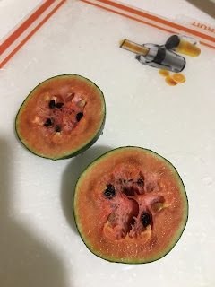 Balcony grown watermelon
