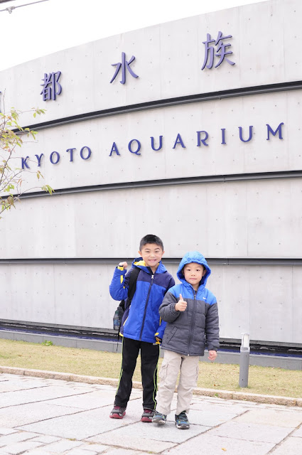 Kyoto travel with kids Kyoto Aquarium