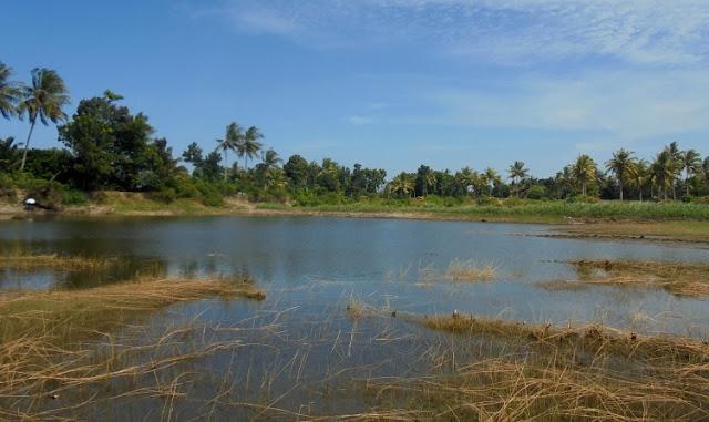 Lokasi Panambangan Pasir Ilegal Berubah Jadi Telaga