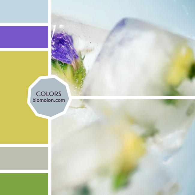 variedad_en_color_moodboard_66