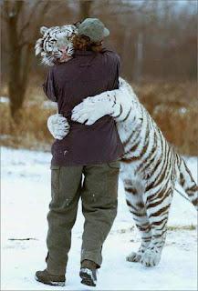 Tigre Blanco con su amo