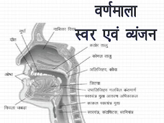 Hindi Varnamala | हिन्दी वर्णमाला |