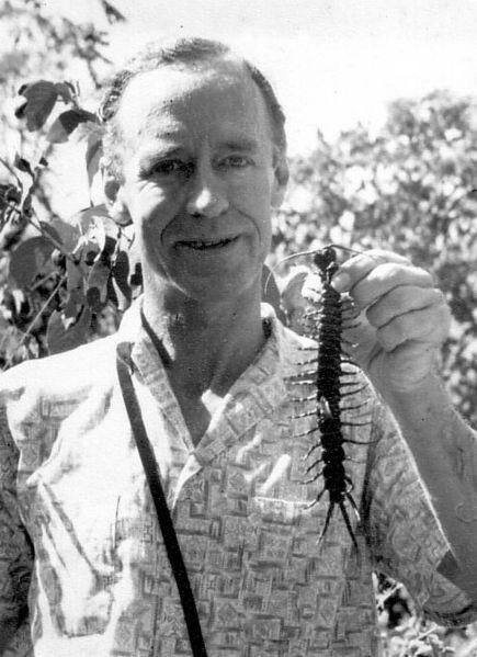 Man holding large Centipede in Trinidad
