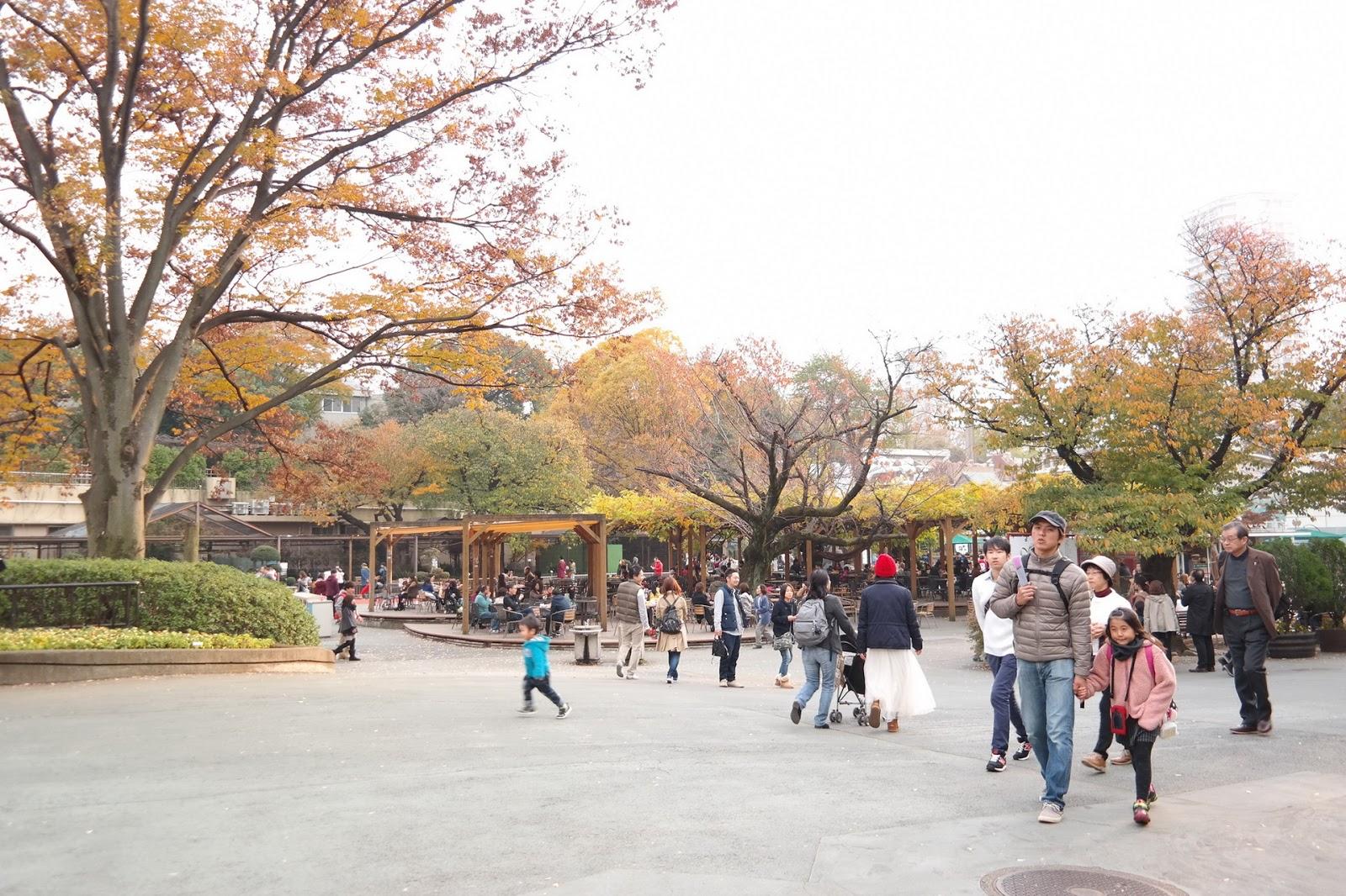 Ueno Zoo, Tokyo  Affordorable