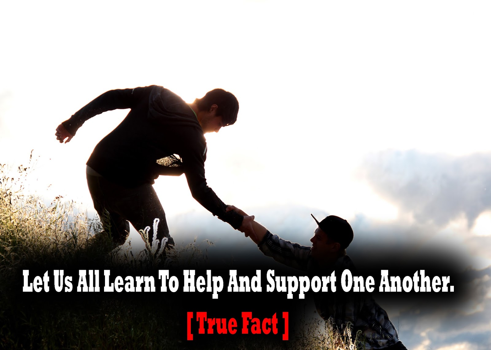 let us all learn to help and support one another true fact