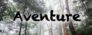 http://www.lesperlesdekerry.fr/search/label/Aventure