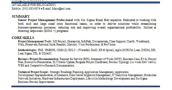 program management consultant sample resume format in word