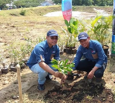 prosesi penanaman pertama pohon buah di siranda view