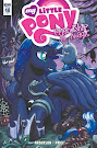 MLP Friendship is Magic #48 Comic Cover Retailer Incentive Variant