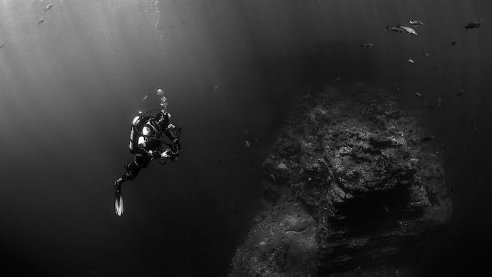 Wallpaper: Diver in Pacific Ocean