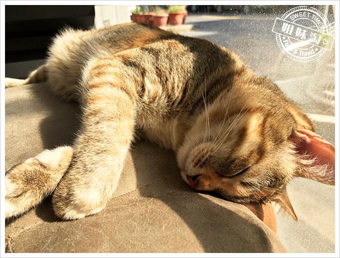 外帶一隻貓-前金區推薦輕食料理