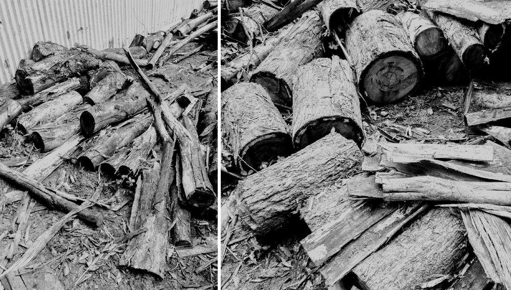 recycling and reusing wood