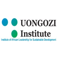 COMMUNICATIONS MANAGER at UONGOZI Institute May, 2019