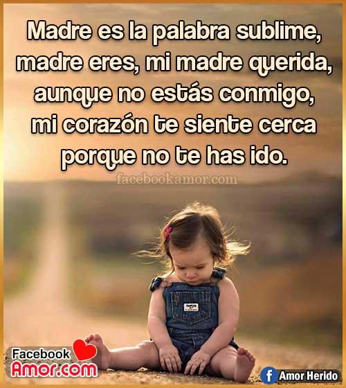 frases bonita para madre