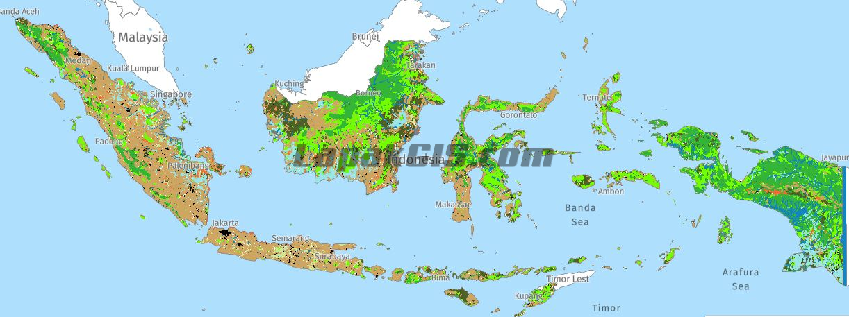 Shapefile Peta Tutupan Lahan KLHK 2017 Seluruh Indonesia