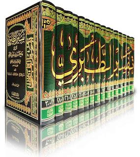 الإمام القرطبي المفسّر