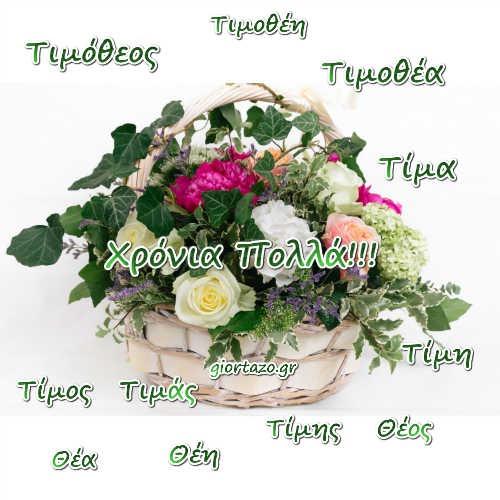 Τιμόθεος, Τίμος, Τιμάς, Τίμης, Θέος, Τιμοθέη, Τιμοθέα, Τίμα, Τίμη, Θέα, Θέη