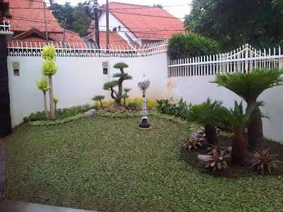 Tukang Taman BSD City | Tukang taman Tangerang