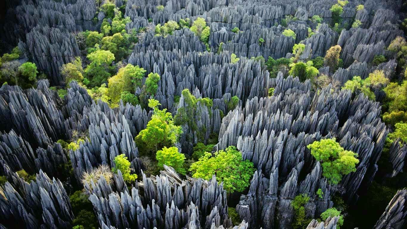 Suitcase and World: Madagascar's Stone Forest. Tsingy de Bemaraha.