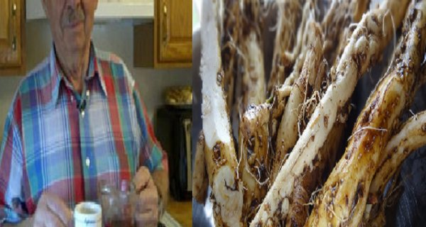 Meet The Man Who Convinced Himself That The Root Of This Plant Is 100 Times More Effective Than Chemotherapy