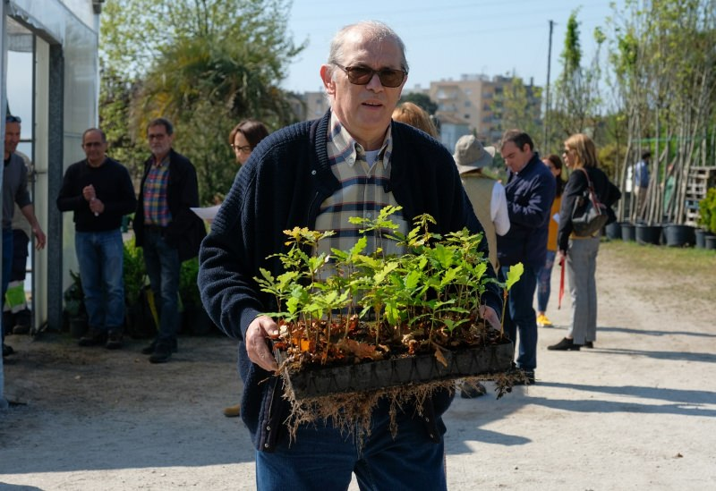 Senhor a levar árvores para plantar