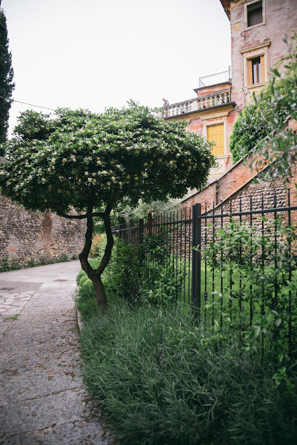Garden by Helena la Petite - Cool Chic Style Fashion