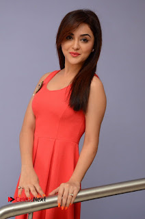 Actress Ragini Nandwani Pictures at Siddhartha Movie Teaser Launch  0068