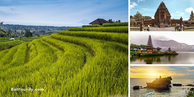 Full Day Bali Jatiluwih Rice Terraces and Tanah Lot Sunset Tour