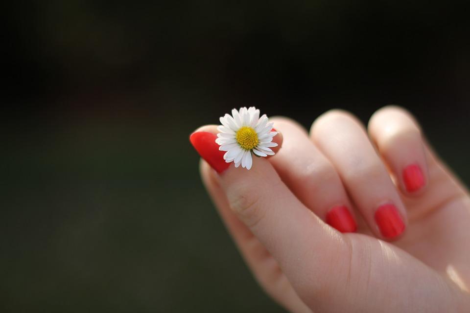 Đặc điểm bàn tay phụ nữ, con gái có số sướng