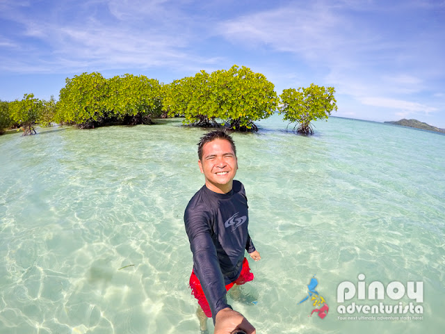 amazing and spectacular sandbars in the Philippines