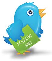 Membuat Widget Follow Twitter animasi Flash