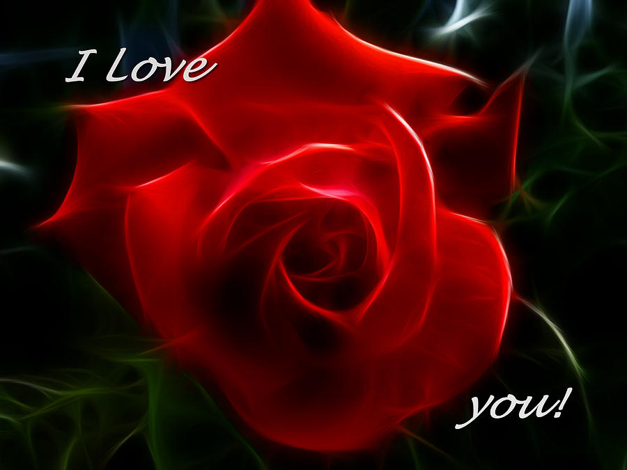 Beautiful I Love You Red Rose Picture
