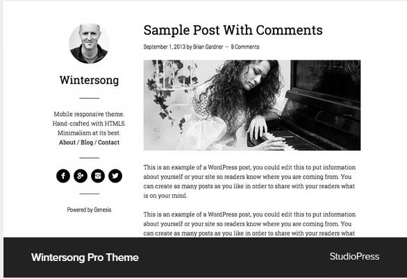 Wintersong Pro Theme Award Winning Pro Themes for Wordpress Blog :Award Winning Blog