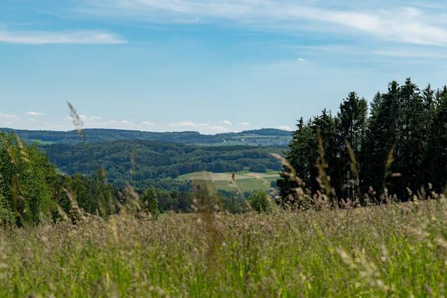 Natursteig Sieg Etappe 8 Schladern bis Au (Sieg) | Wandern im Siegtal Natursteig Sieg 12