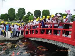 Tham quan Công Viên Cá Koi Rin Rin Park tại - Vườn Nhật Bản cực đ6ã