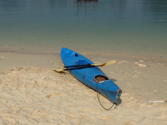 canoe baie halong voyage vietnam tour bateau par cat ba, mer montagne paysage vietnam
