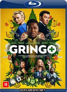 Baixar Filme Gringo – Vivo ou Morto Dublado Torrent
