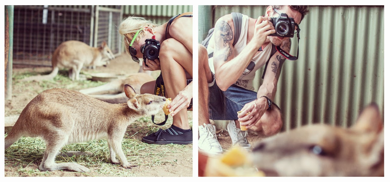 4. Featherdale Wildlife Park, Australia - These Globetrotters Document Their Travels In A Really Cool Way.
