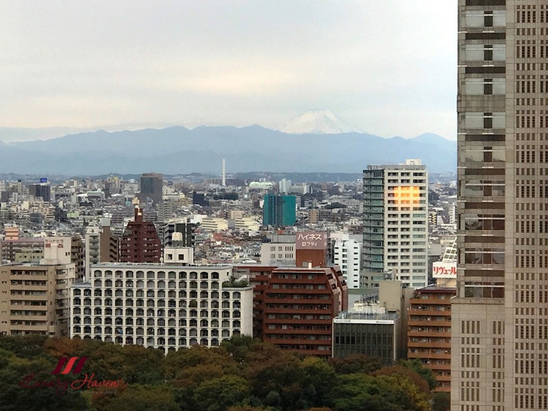 keio plaza hotel review mount fuji view